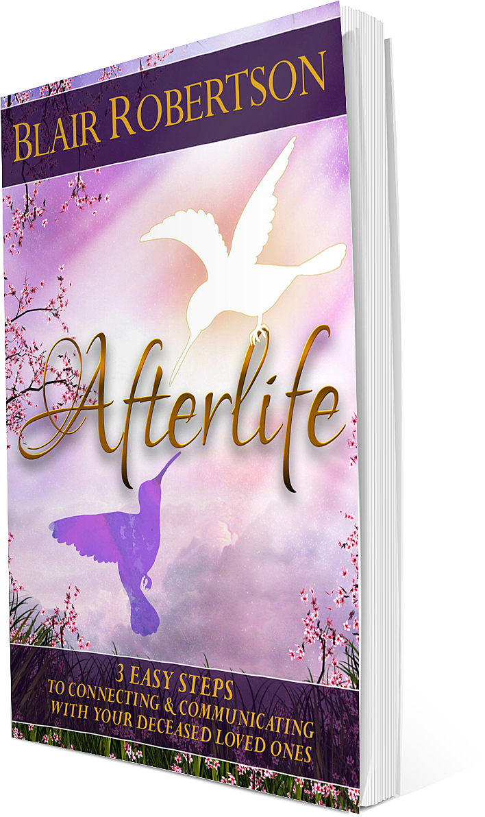 afterlife book